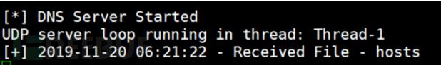 基于DNS的数据泄露开源测试工具篇(四)