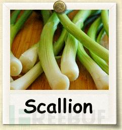 Scallion:一款基于GPU的Onion哈希生成器